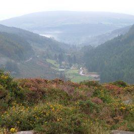 Honeymoon to Ireland – Part 1