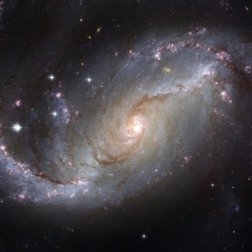 Great Question: Is there a pattern to the universe?